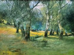 Zeller Mihály (1859 - 1915 ) Nyári erdő