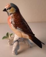 ENS porcelán madár szobor