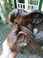 Faragott galambok