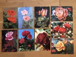 Rózsa virágos képeslapok  - ár / db      -1.