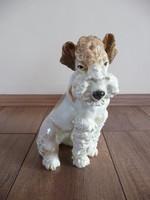 ENS porcelán foxi kutya