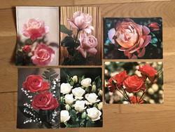 Rózsa virágos képeslapok  - ár / db      -2.