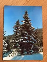 Havas tájkép képeslap - 1979