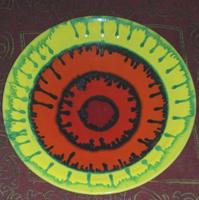 Kerámia fali dísz /  tál 28 cm átmérő,  jelzett