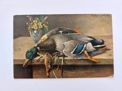 Régi képeslap konyhai csendélet levelezőlap kacsák vadászat