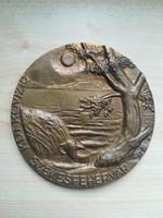 Székesfehérvár bronz plakett