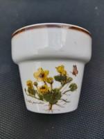 Bavaria mini botanikás kaspó