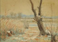 Magyar művész 1950 körül : Téli tópart