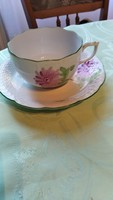 Tertia Herend tea cup with tanyer.
