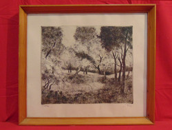 István Biai-föglein (1905-1974) clearing - beautiful etching in glazed frame (invoice attached)