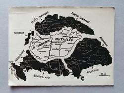 Irredenta Hungarian National Association tyranon postcard, postman