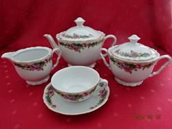 Epiag Czechoslovak porcelain, antique, six-person tea set. He has!