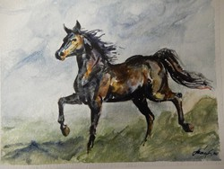 László István: black horse, watercolor