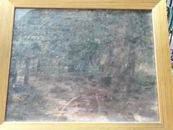Alexander Turmayer: in the woods