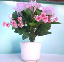 Szépséges cserepes selyemvirág díszített rózsa