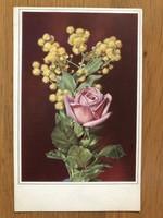 Antik képeslap - 1950