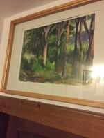 Eve wiegisser forest