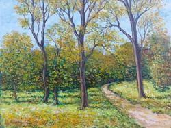 Forest road - landscape (28x21 cm)