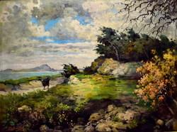 Pfeifer Elek ( 1882 ) VIHAR A BALATONNÁL !!!