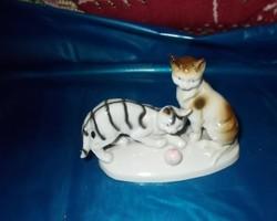 Játékos cicák