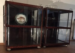 Art deco showcases made of wood