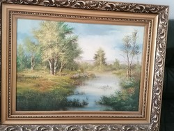 Painting by painter Mr. Finta