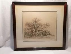 Walnut, marked etching