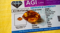 39.90 Carat Gold Lemon with Precious Stone Certificate