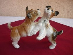 Ens playing a pair of dogs ,, flawless ,, now without a minimum price.